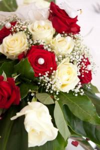 Schöne Rosen Bilder findet man auch in kostenlosen Datenbanken.