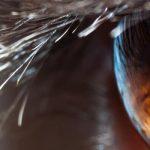 Digitale Spiegelreflexkamera – Wie funktioniert eine Spiegelreflexkamera?