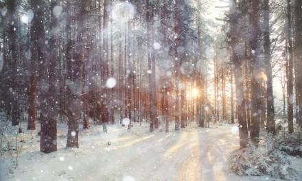 Fototipp: Fotografieren im Schnee